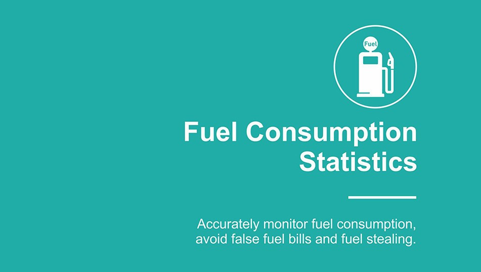 fuel consumption statistic